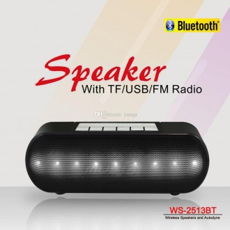 Loa bluetooth WS-2513BT